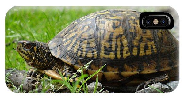 Turtle Crossing IPhone Case