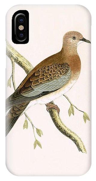 Turtle Dove IPhone Case