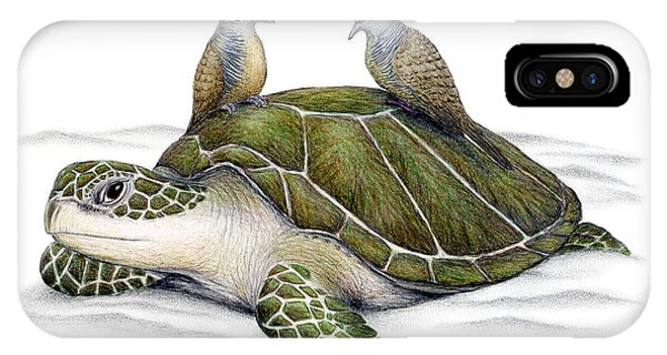 Turtle iPhone X Case - Turtle Doves by Don McMahon