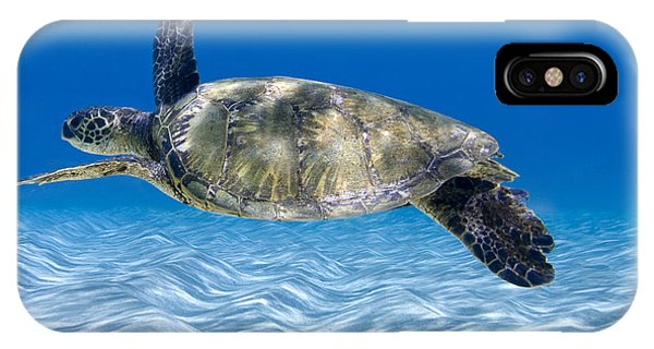 Reptiles iPhone Case - Turtle Flight -  Part 2 Of 3  by Sean Davey