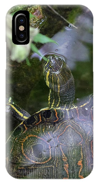 Turtle Getting Some Air IPhone Case