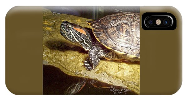 Turtle Reflections IPhone Case