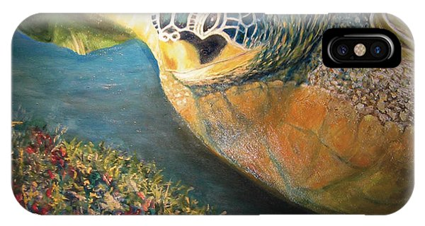 IPhone Case featuring the painting Turtle Run by Karen Zuk Rosenblatt