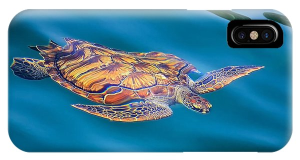 Turtle Up IPhone Case
