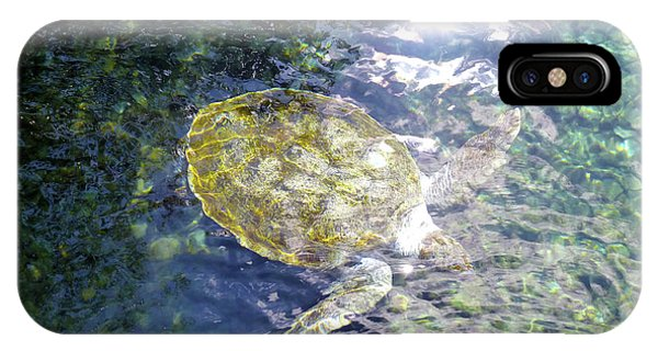 IPhone Case featuring the photograph Turtle Water Glide by Francesca Mackenney
