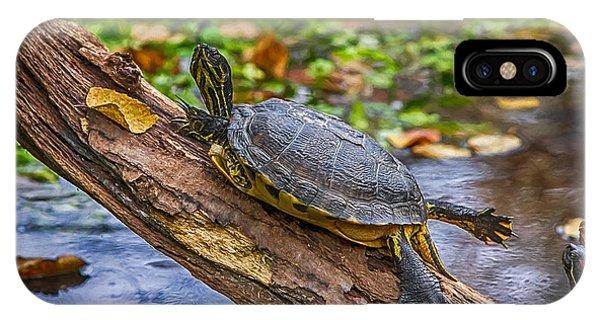 Turtle Yoga IPhone Case