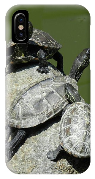 Turtles At A Temple In Narita, Japan IPhone Case