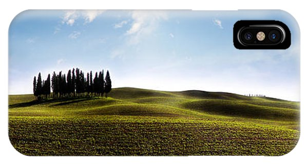 Tuscan Cypress Tree IPhone Case