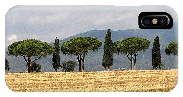 Tuscany Trees IPhone Case
