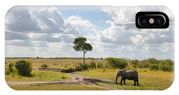 Tusker Scape IPhone Case