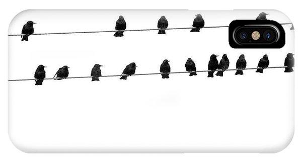 Twenty Blackbirds IPhone Case
