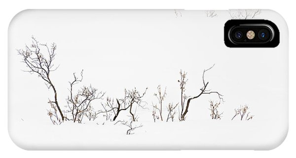 Twigs In Snow IPhone Case