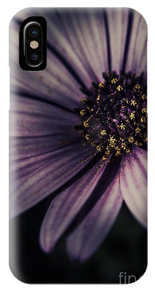 Dark Violet iPhone Case - Twilight Daisy by Jorgo Photography - Wall Art Gallery