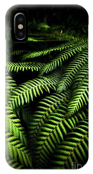 Growth iPhone Case - Twilight Rainforest Fern  by Jorgo Photography - Wall Art Gallery