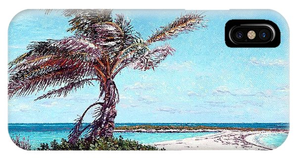 Eleuthera Art iPhone Case - Twin Cove Palm by Eddie Minnis