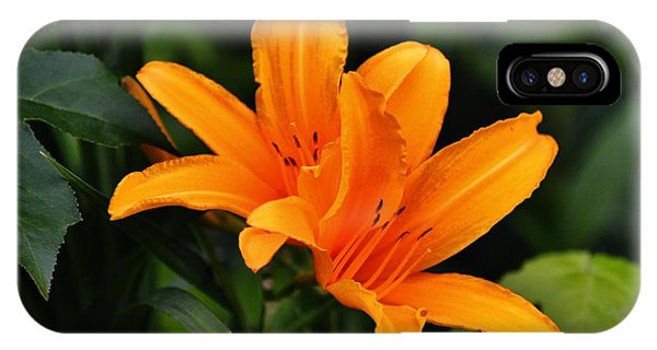 Twin Lillies IPhone Case