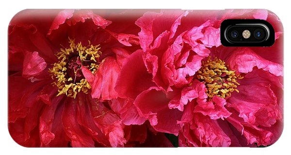 Twin Peonies IPhone Case