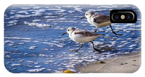 Twin Plovers IPhone Case