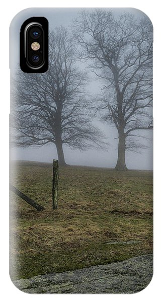 Twin Trees Late Fall Foggy Morning IPhone Case