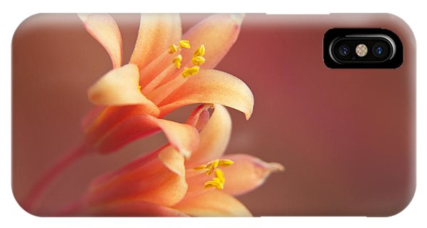 Twin Yucca Flowers IPhone Case