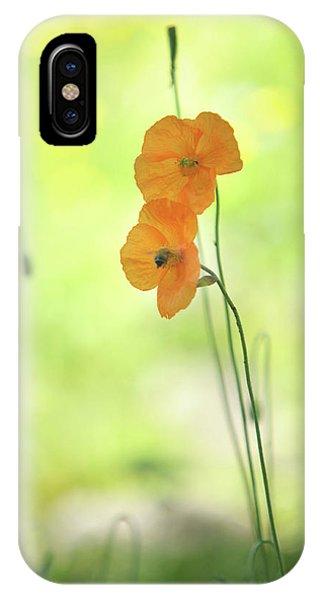 Buy Art Online iPhone Case - Twins. Orange Poppies by Jenny Rainbow