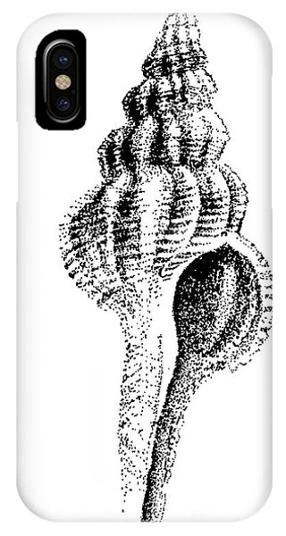 twirly Shell IPhone Case