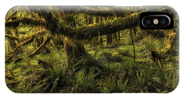 Twisted  Phone Case by T-S Fine Art Landscape Photography