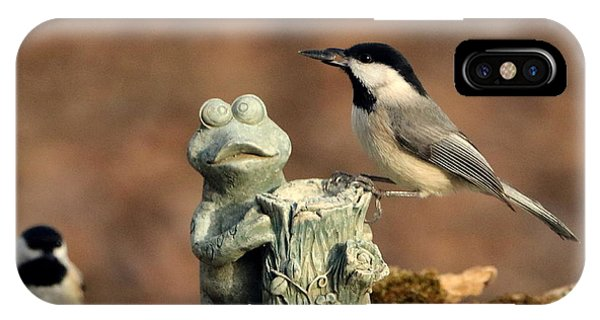 Two Black-capped Chickadees And Frog IPhone Case