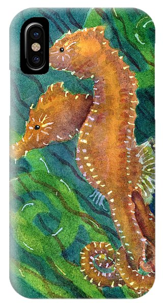 Seahorse iPhone Case - Two By Sea by Amy Kirkpatrick