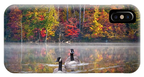 Two Canadian Geese Swimming In Autumn IPhone Case