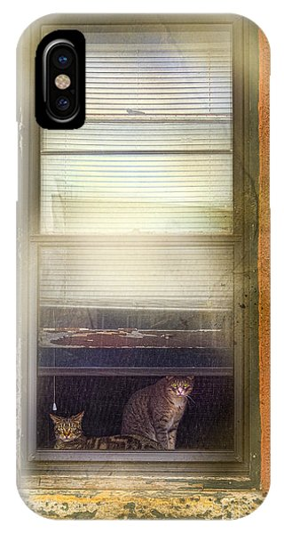 Two Cats Of Elm IPhone Case