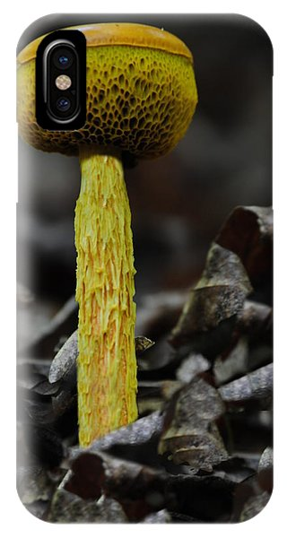 Two Colored Bolete IPhone Case