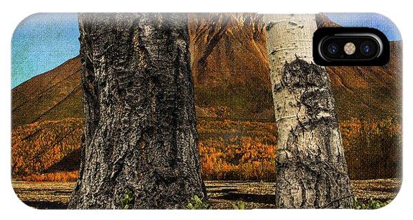 Two Cottonwood Trees And Kinnikinnik IPhone Case