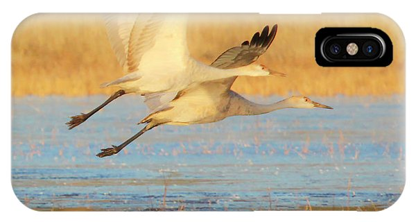 Two Cranes Cruising IPhone Case