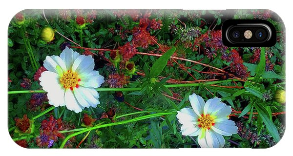 IPhone Case featuring the photograph Two Daisies by Roger Bester