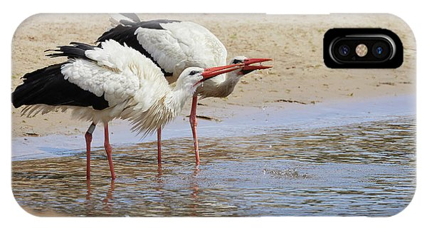 Two Drinking White Storks IPhone Case