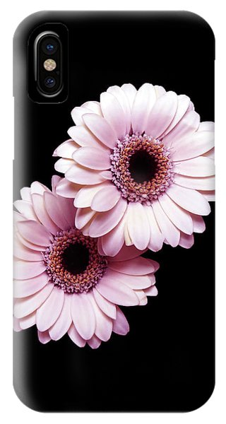 Two Gerberas On Black IPhone Case