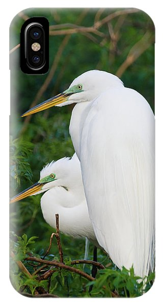 Two Great Egrets IPhone Case