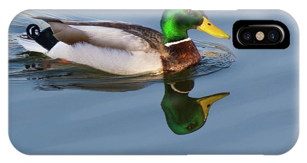 Two Headed Duck IPhone Case