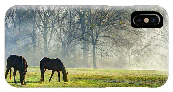 Two Horse Morning IPhone Case