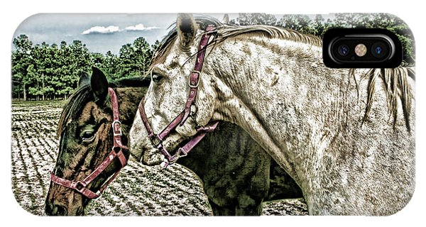 Two Horses In A Field IPhone Case