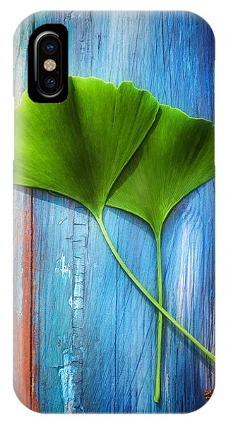 Two Leaves Of Ginkgo Biloba IPhone Case