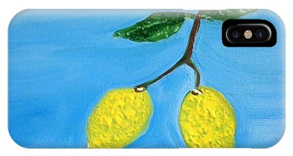 Two Lemons For Karen IPhone Case