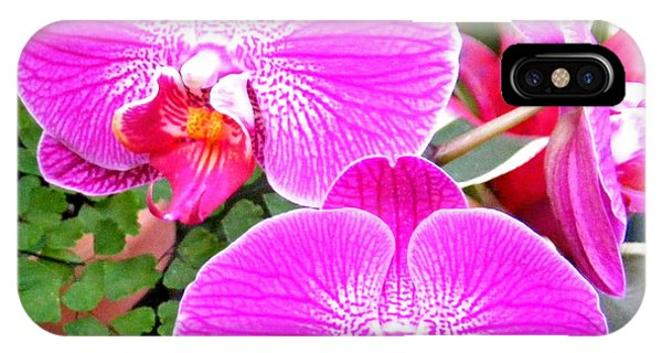 Two Orchids IPhone Case