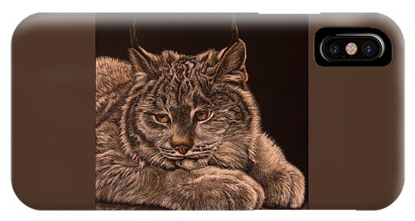 Two Paws Down IPhone Case
