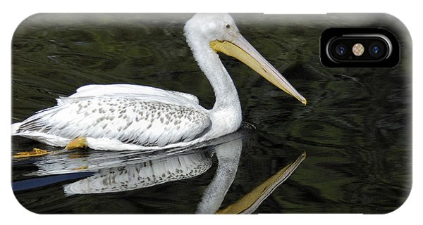 Two Pelicans IPhone Case