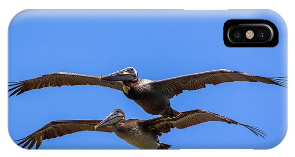 Two Pelicans Over The Beach IPhone Case