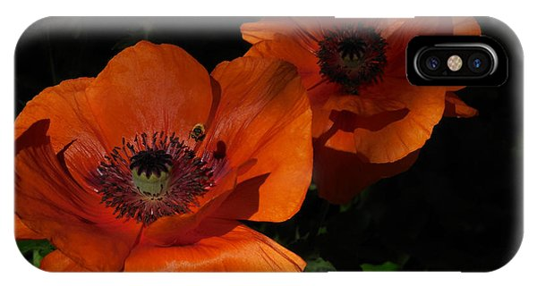 Two Poppies  And A Bee IPhone Case