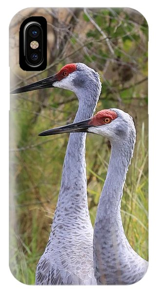Two Sandhills In Green IPhone Case