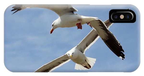Two Seagulls Almost Collide  IPhone Case